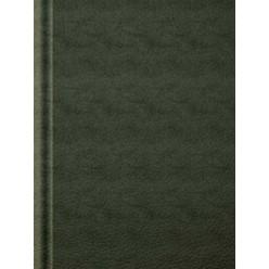 Ежедневник А5 недатир, бумвинил, Зеленый, 272с