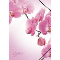 Папка пластиковая резинка 01отд. А4 EK Romantique розовая
